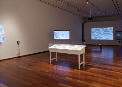 In Your Words: Nanna Debois Buhl and Brendan Fernandes, 2014,  installation view, MacLaren Art Centre