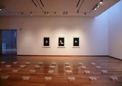 Meryl McMaster, Luke Parnell, installation, Gallery 3, Photo: Andre Beneteau