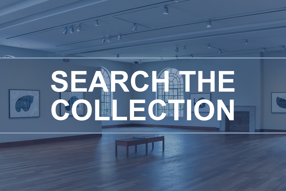 "Button linking to ""Search the Collection"" webpage"