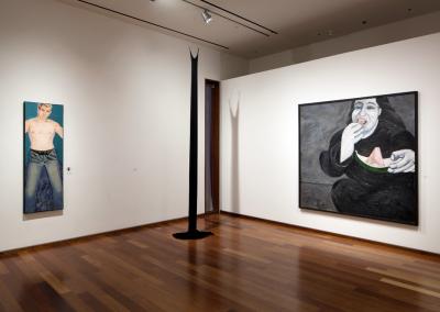 Fever Dreams, installation view, MacLaren Art Centre, 2018. Photo: André Beneteau