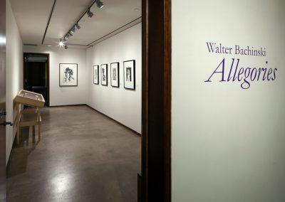 Walter Bachinski: Allegories, installation view, MacLaren Art Centre, 2018. Photo: André Beneteau
