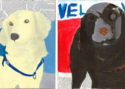 Paw-fect Portraits