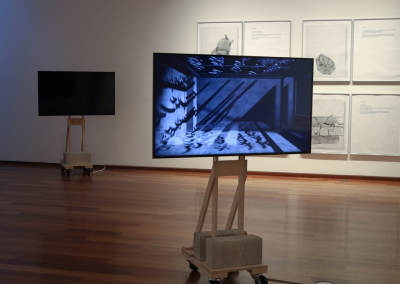 Installation view of What is here has echoed, MacLaren Art Centre, 2019. Photo: Andre Beneteau