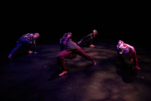 Stories We Share: Performances by Simcoe Contemporary Dancers