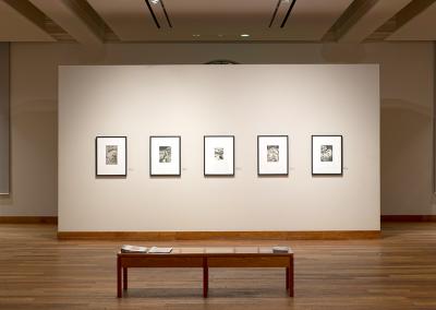 Installation view of Bertram Brooker: This Tremendous Arc, held at the MacLaren Art Centre, 2019