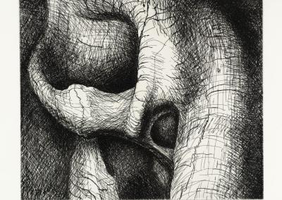 Henry Moore: Elephant Skull