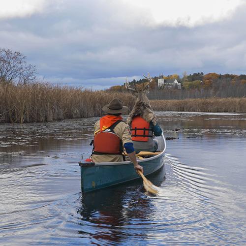 Video still of Canoe Fight Wye Marsh by artist Michael Farnan